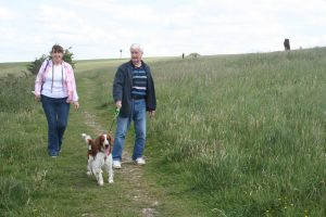 Social Wednesday Dog Walks At Dunstable Downs